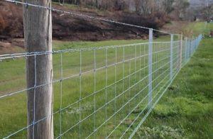 Забор из шарнирной сетки: фото 2